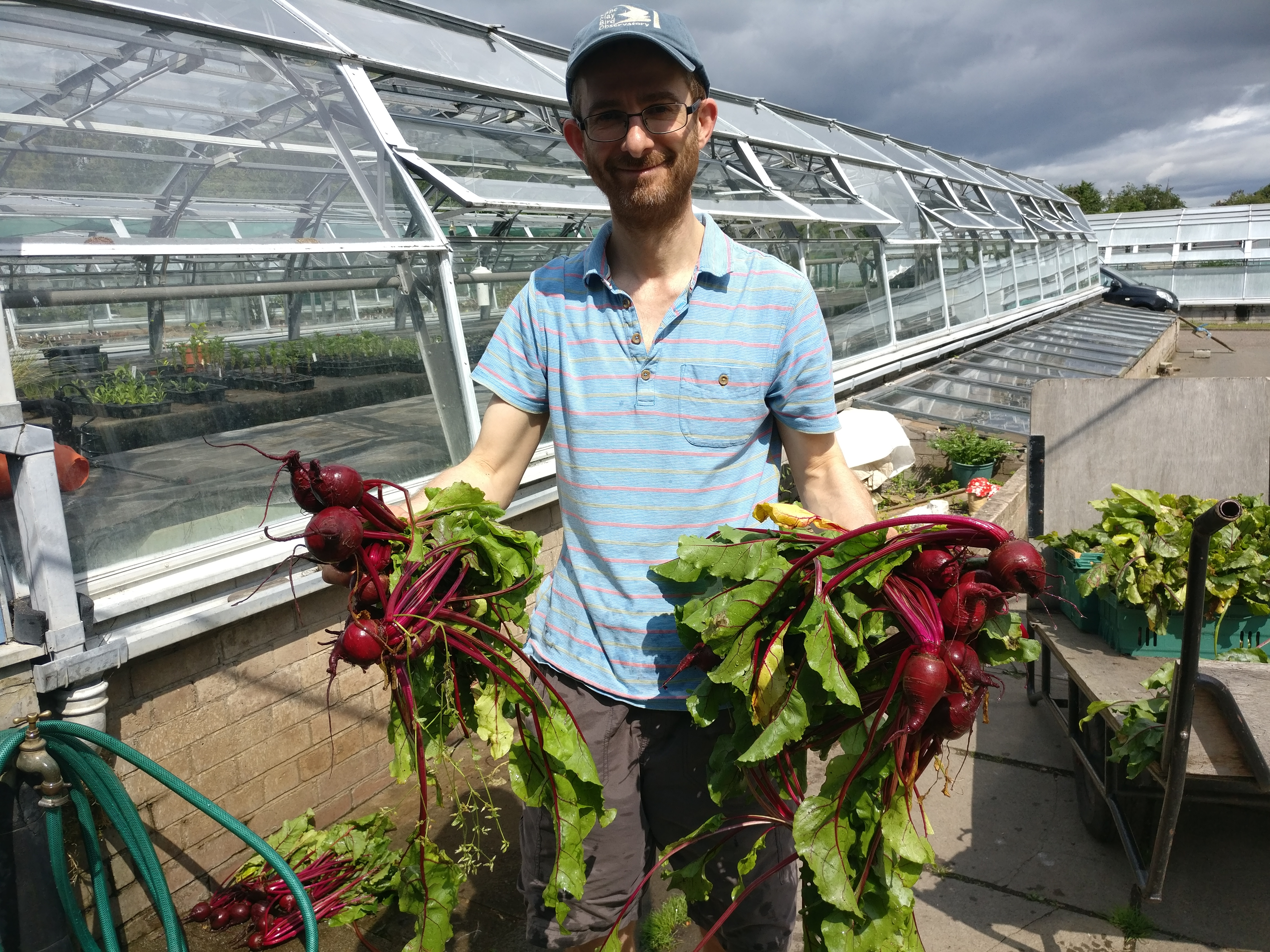 A photo of a man washing the beetroot